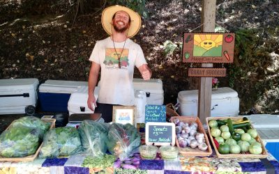 HappyDay CSA 2018 Newsletter Week 4 June 24th
