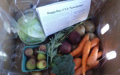 HappyDay CSA Newsletter Week 17 Sept 24th